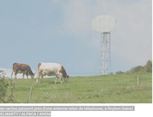 Bêtes malades ou qui meurent le malheur est dans les champs électromagnétiques